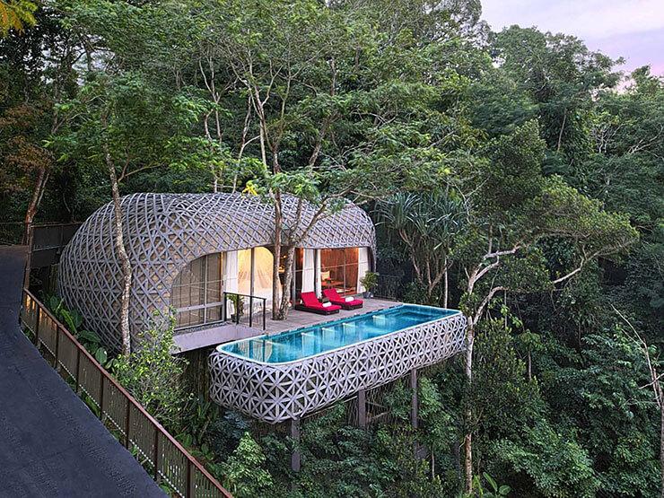 Casa na árvore com piscina