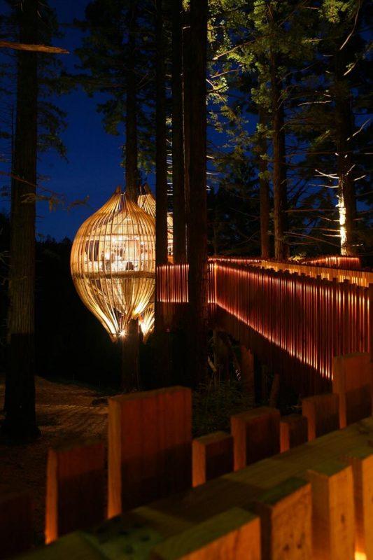 Casa na árvore iluminada