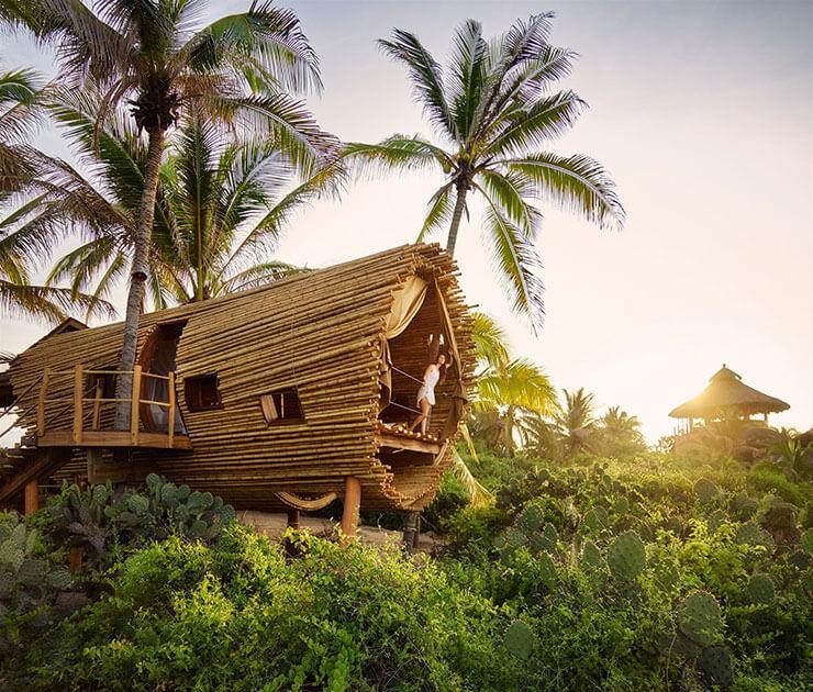 Casa nas palmeiras de bambu