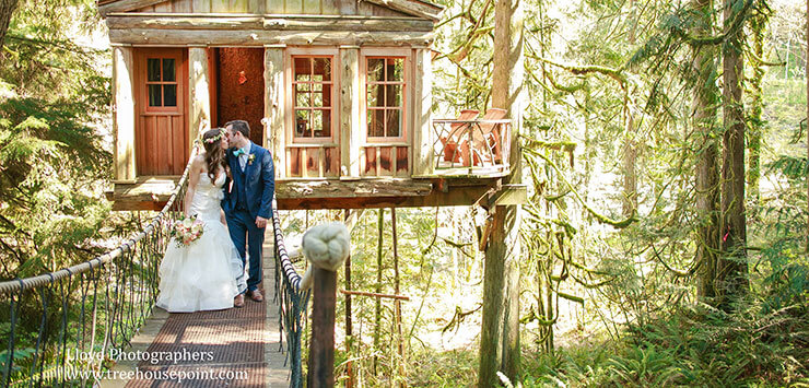 Casamento em casa na árvore