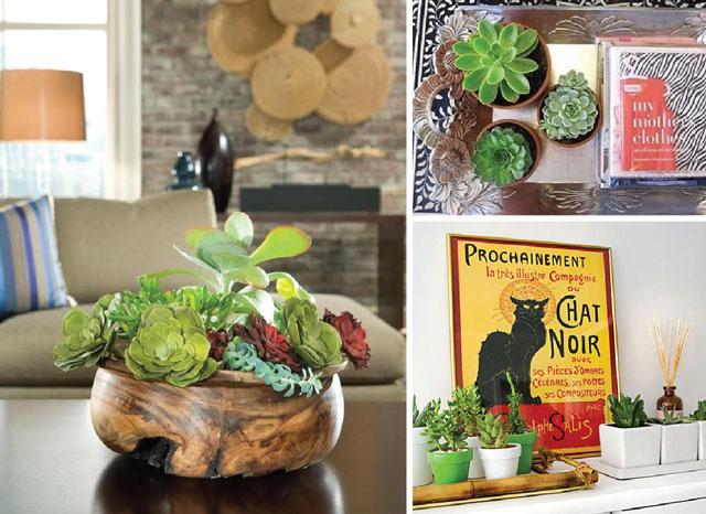 Decoração residencial com plantas decorativas