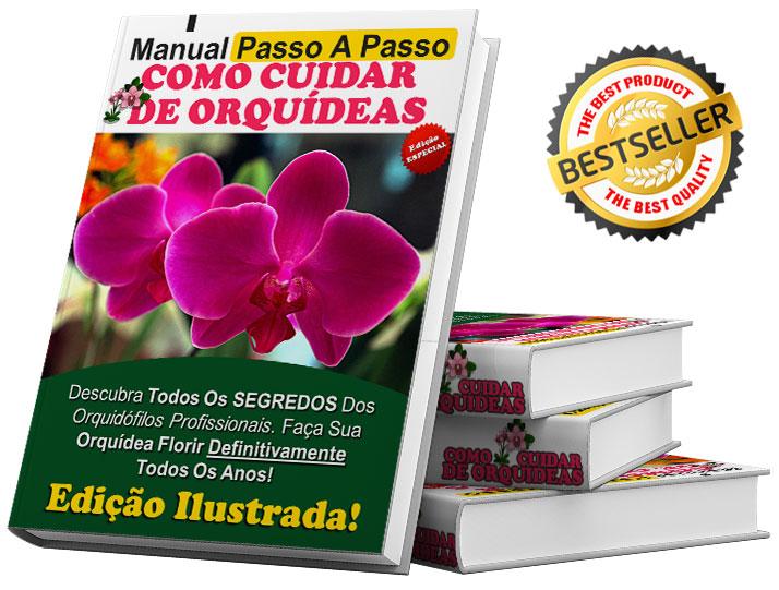 Manual passo a passo de Como Cuidar de Orquídeas