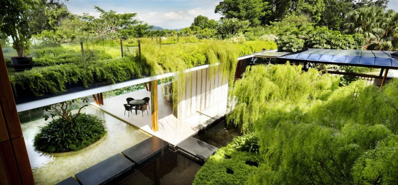 Edícula moderna com jardim no telhado