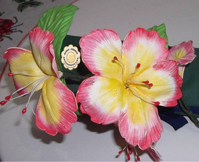Flores de 5 Pétalas
