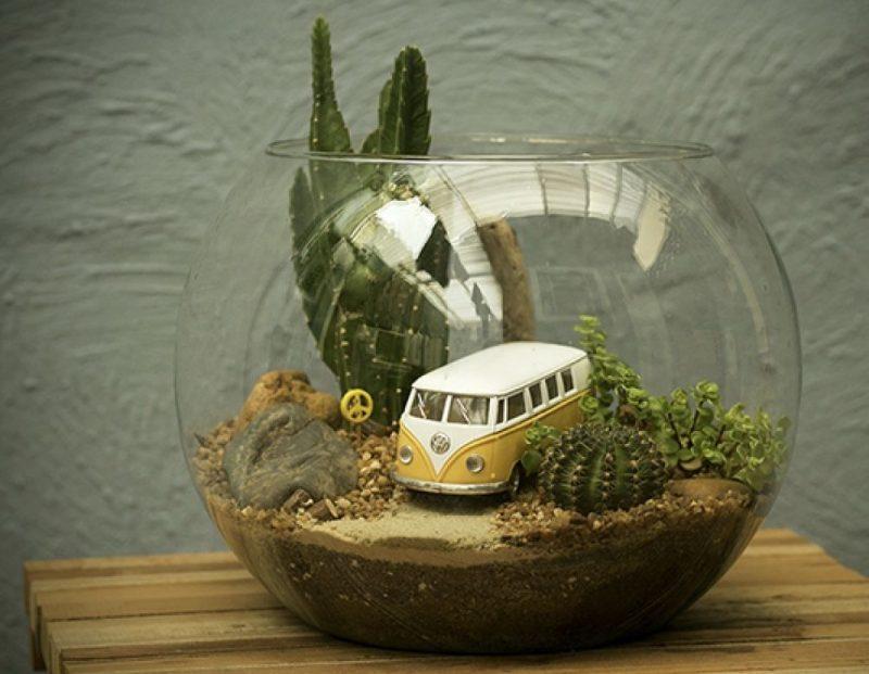 Montado em um vidro de aquário