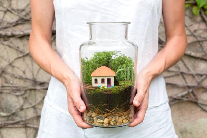 Belo terrário montado em jarro de vidro