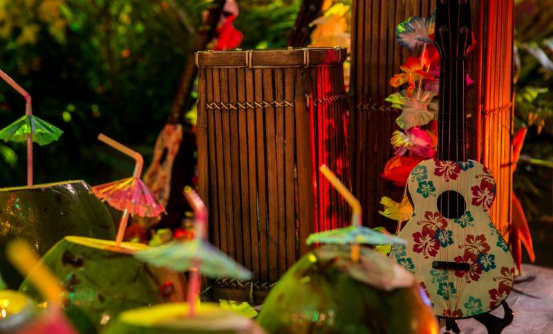 Festa Luau com Instrumentos Musicais e Frutas tropicais