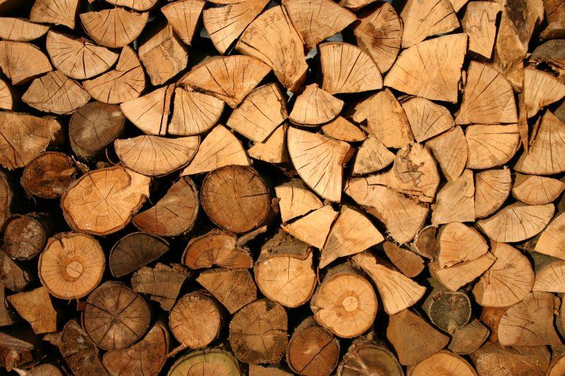madeira goiabão