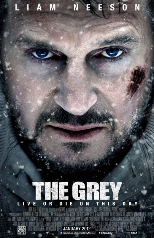poster para imprimir filmes the gray
