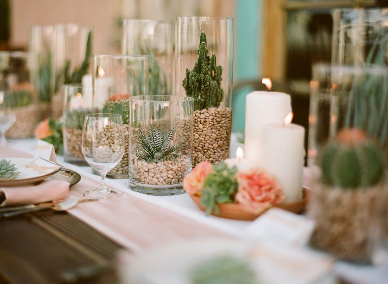 Mini cactus decorativos