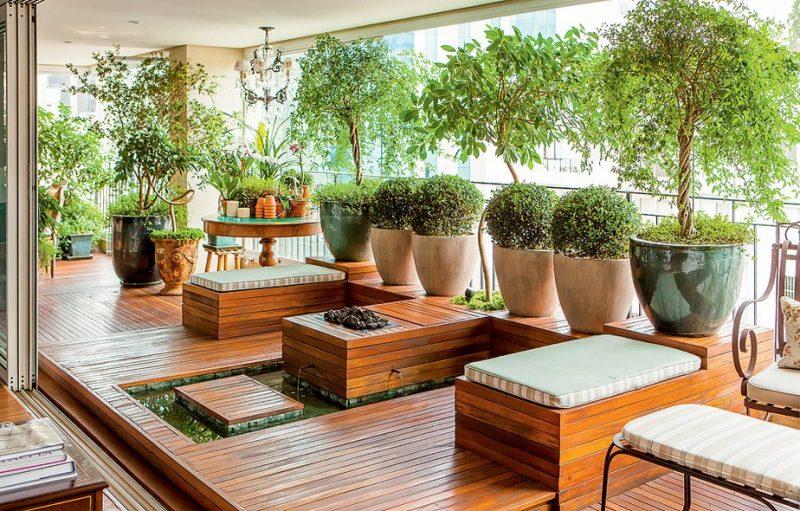 Como Cuidar de Bambu de Jardim