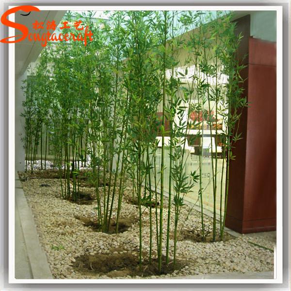 Bambu De Jardim Tipos Decora 231 227 O E Com Cuidar Confira