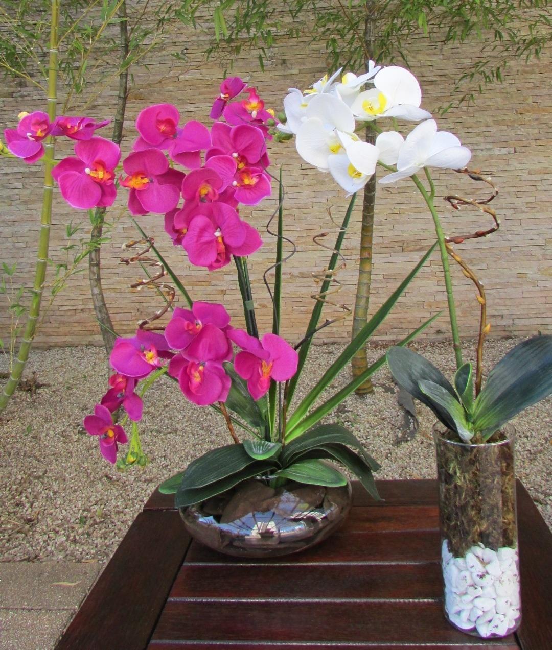 Como Cuidar de Orquídeas em Vasos