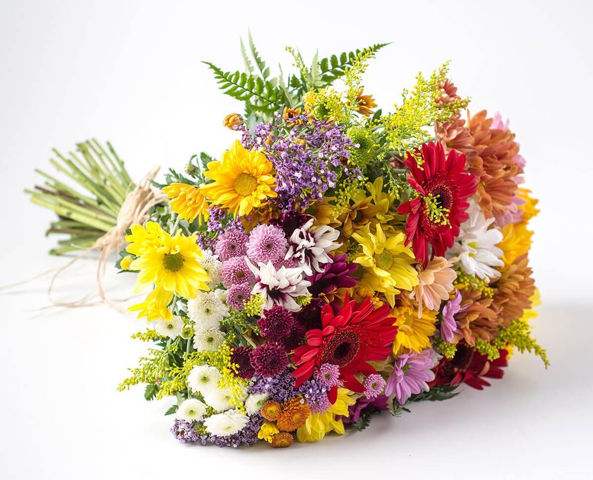 Flores do Campo Significado