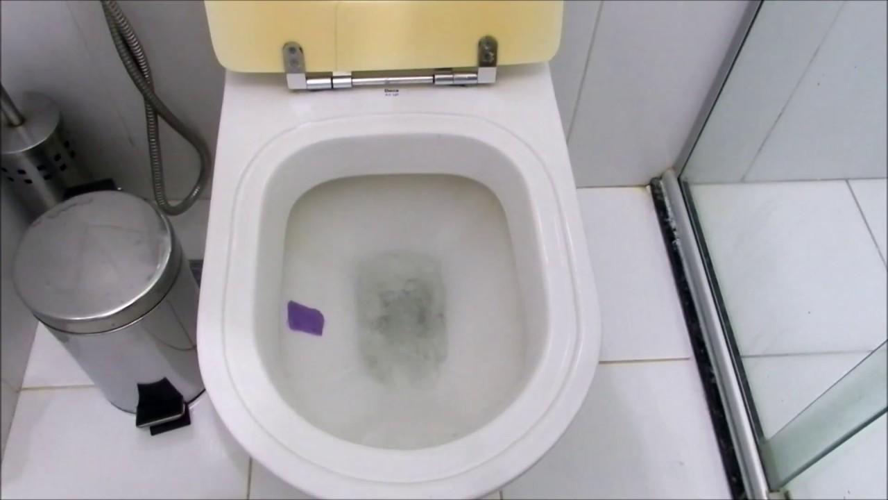 Cuidados Para não Entupir Seu Vaso Sanitário