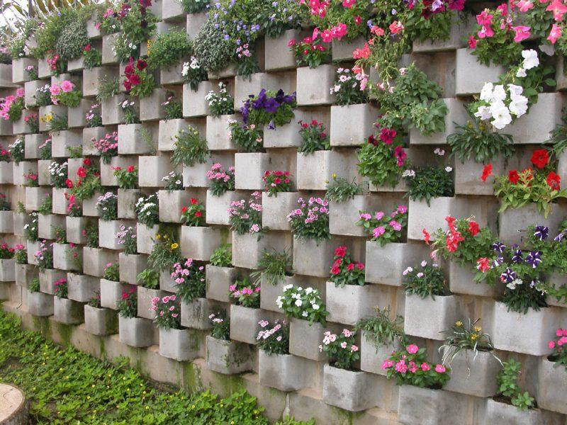 Flores para jardim Vertical
