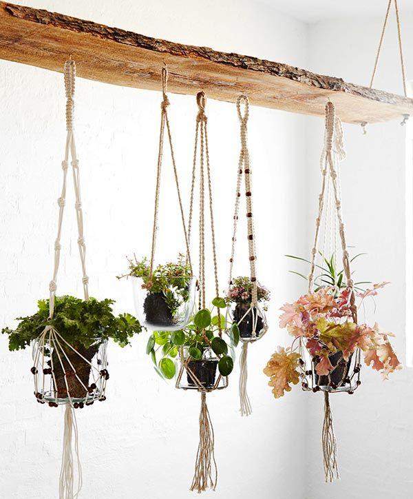 Suportes de Plantas Para Pendurar