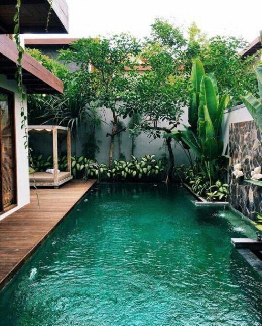Jardim Tropical Com Piscina