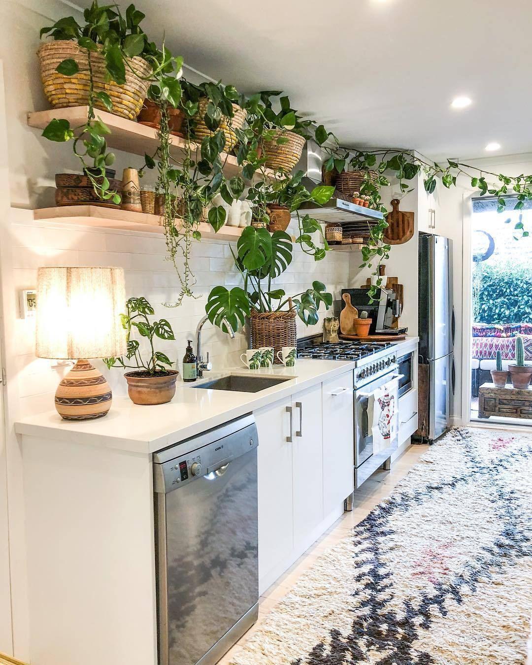 Urban Jungle na cozinha