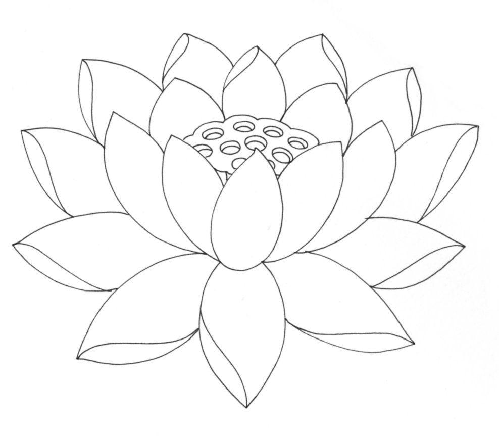 Desenhos De Flor Grande