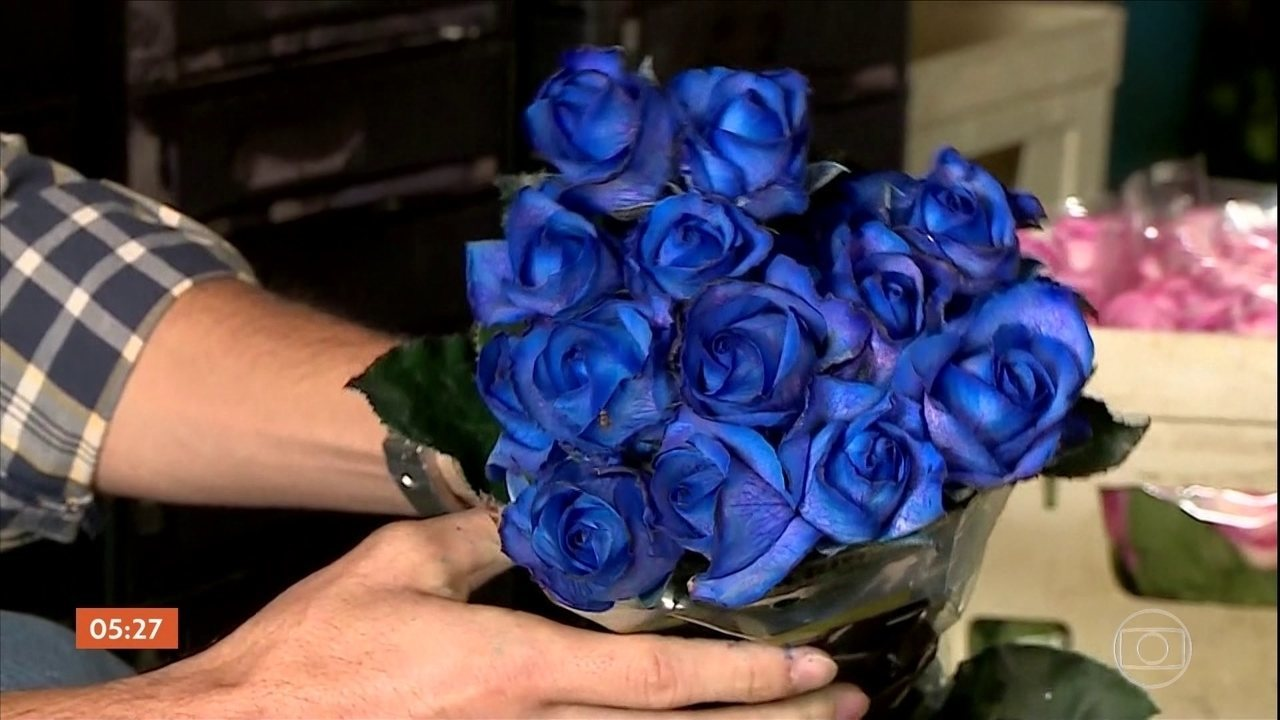 Rosa Azul flor azul